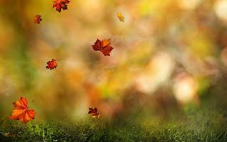 https://banmaihong.files.wordpress.com/2016/06/4381f-autumn-leaves-falling-down.jpg