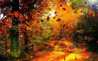 https://banmaihong.files.wordpress.com/2016/10/f1fc5-autumn_wind.jpg