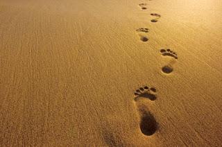 https://banmaihong.files.wordpress.com/2017/06/94bd7-footprints-in-sand.jpg